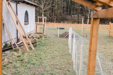 Blick vom Hühnerhaus in den Auslauf